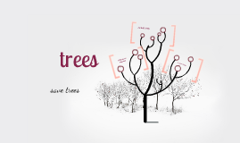 Trees for School Feb15,2013