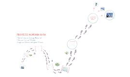 Proyecto Montaña Rusa - Física Conceptual